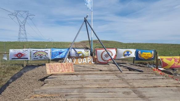 dapl9